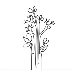 continuous line drawing of flowers vector image vector image