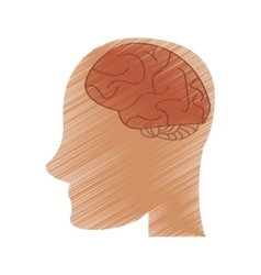 drawing profile head brain idea imagination vector image