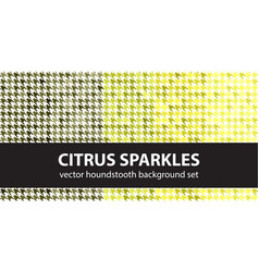 Houndstooth pattern set citrus sparkles seamless vector
