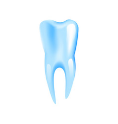 realistic healthy tooth in 3d vector image