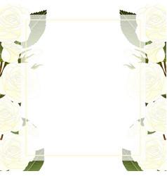 White rose flower banner card border vector