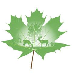deer family vector image vector image