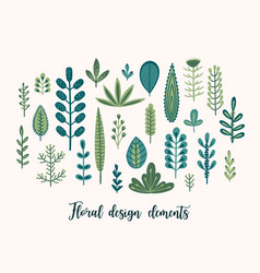 floral set with cute herbs and leaves vector image