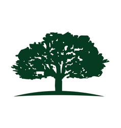 Oak tree logo design template vector