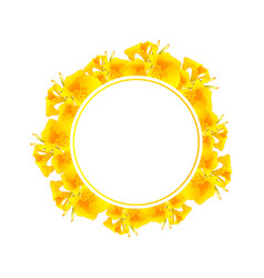 yellow canna lily banner wreath vector image