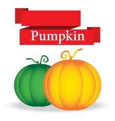 fresh pumpkin on white background vector image vector image
