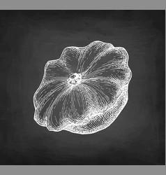 Chalk sketch pattypan squash vector