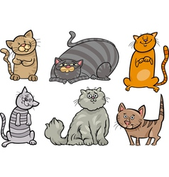Cute cats set cartoon vector