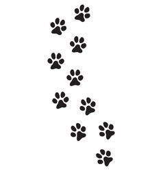 dog paw prints track vector image
