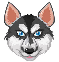 Face of siberian husky vector