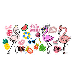 flamingo doodle with tropical elements vector image