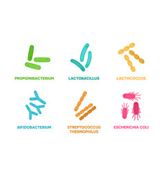 Probiotics set good bacteria and vector