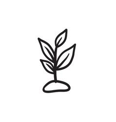 Sprout sketch icon vector