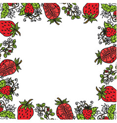 strawberry fruit frame empty template vector image