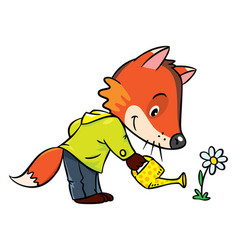 little funny fox watering flower vector image vector image