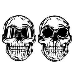 Skull and skull in sunglasses vector image vector image