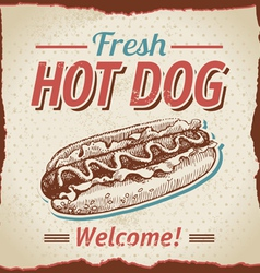 Vintage hot dogs background vector image