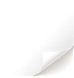 blank white page curl vector image
