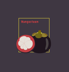 hand drawing mangosteen with slice on dark vector image