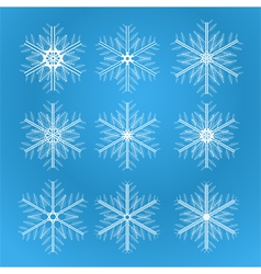 Icons of snowflakes vector image