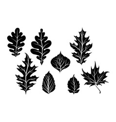 nature leaves silhouette vector image