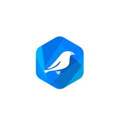 Canary mail logo icon vector