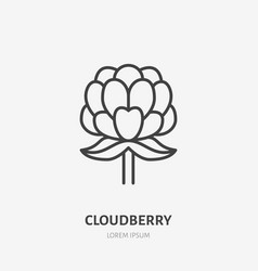 Cloudberry flat line icon forest berry sign vector