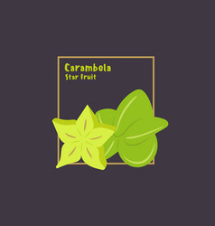 hand drawing carambola starfruit with slice on vector image