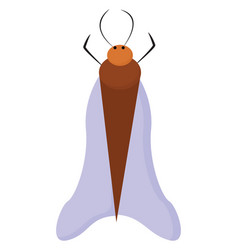 Painting a brown bug or color vector