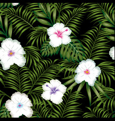 white hibiscus and green leaves seamless black vector image