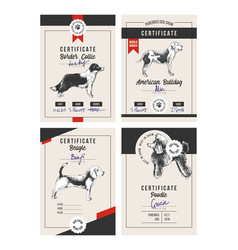 4 dog show certificates vector