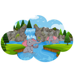 Elephants playing in water vector