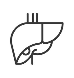 Liver human organ related outline icon vector