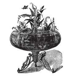 the aquarium vintage vector image