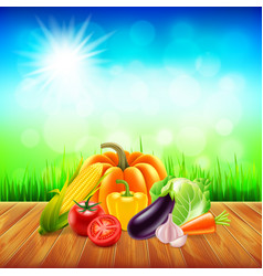 Vegetables on wooden table with sky background vector