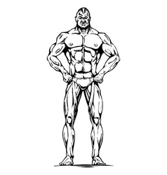 Athletic man vector