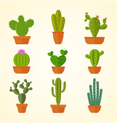 Cactus decorative home plant in pots flat vector