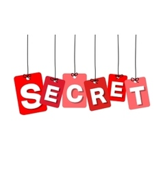 colorful hanging cardboard Tags - secret vector image