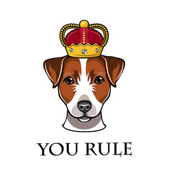 jack russell terrier in crown dog vector image
