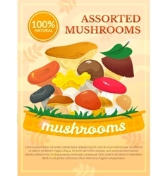 Mushrooms concept design vector image