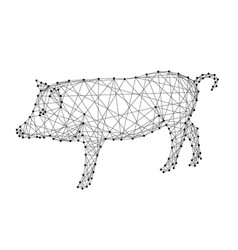 pig is a symbol of the new year 2019 from vector image