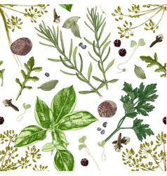 Seamless pattern with herbs and spices vector