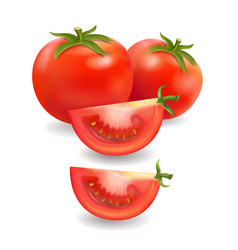 tomato and slice realistic isolated vector image