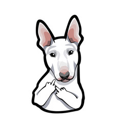 dog bull terrier with middle finger vector image