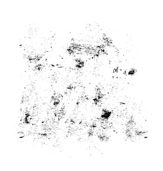 Black and white grunge texture vector image vector image