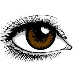 Eye on white background eyes art woman vector