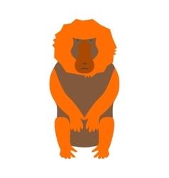 monkey baboon vector image