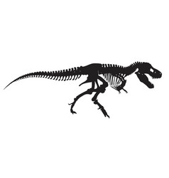 T-rex skeleton vector
