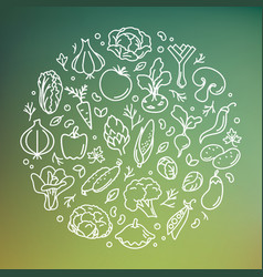 vegetable in the circle vector image