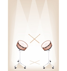 Two Beautiful Snare Drum on Brown Stage Background vector image vector image